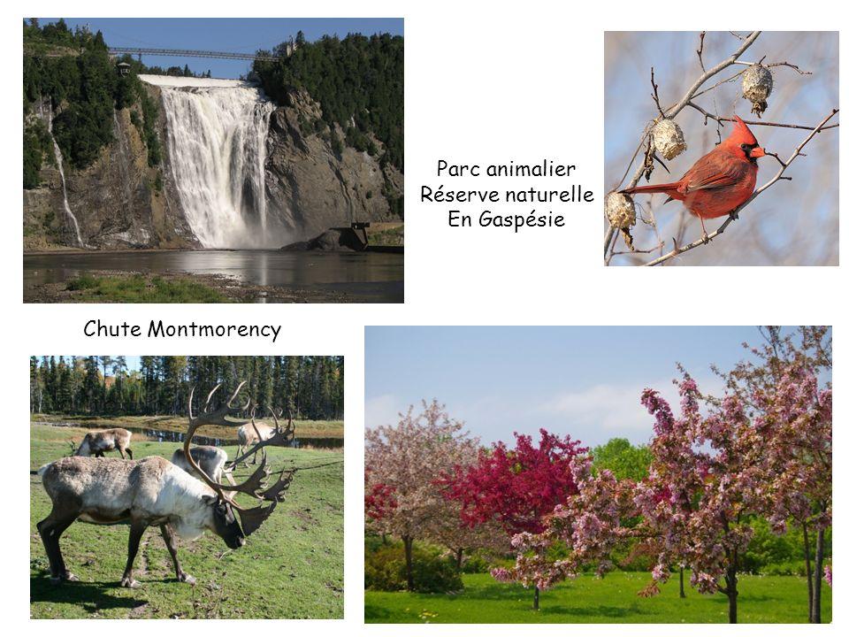 Parc animalier Réserve naturelle En Gaspésie Chute Montmorency