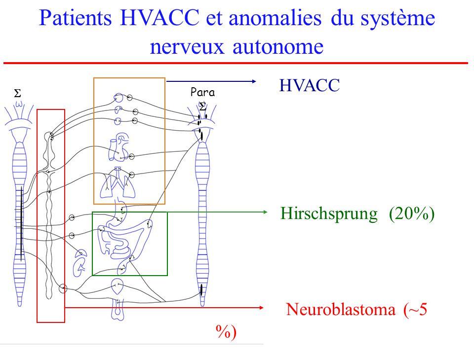 Patients HVACC et anomalies du système nerveux autonome