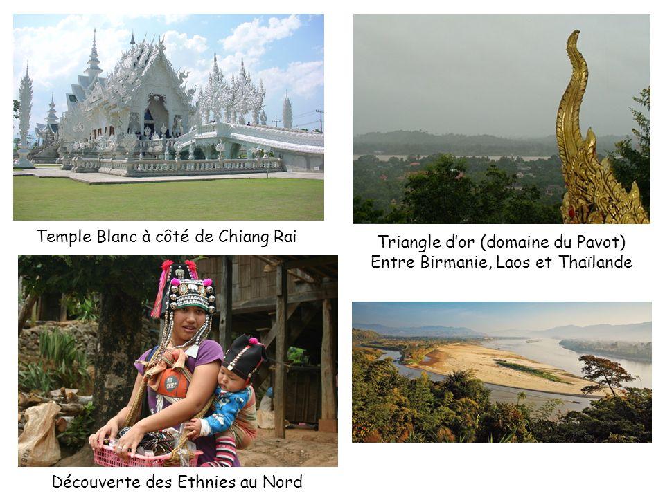 Temple Blanc à côté de Chiang Rai Triangle d'or (domaine du Pavot)