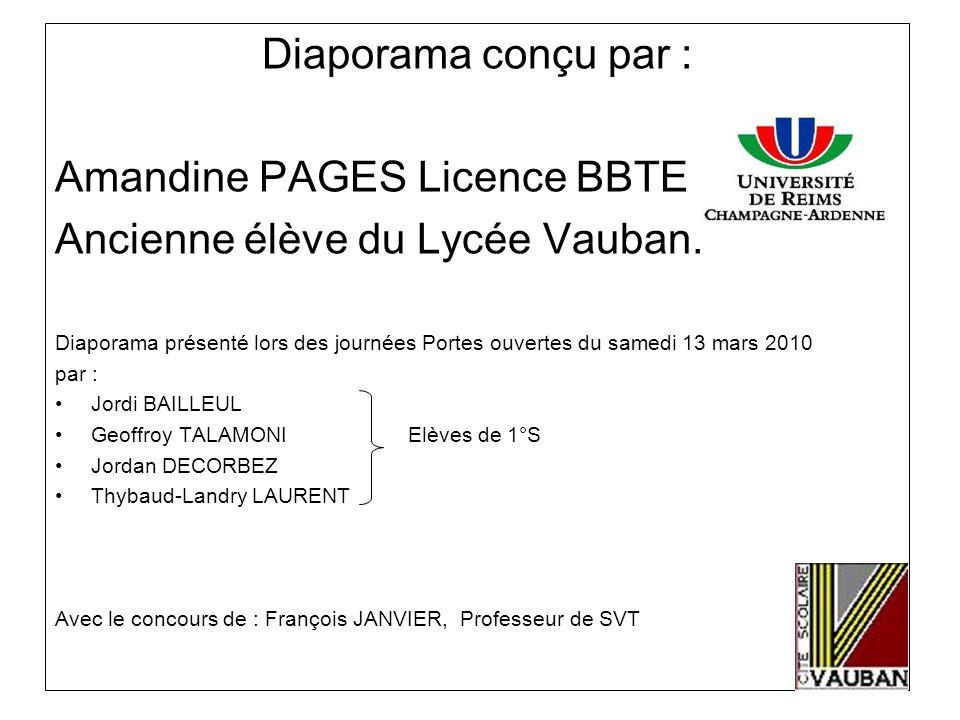 Amandine PAGES Licence BBTE Ancienne élève du Lycée Vauban.