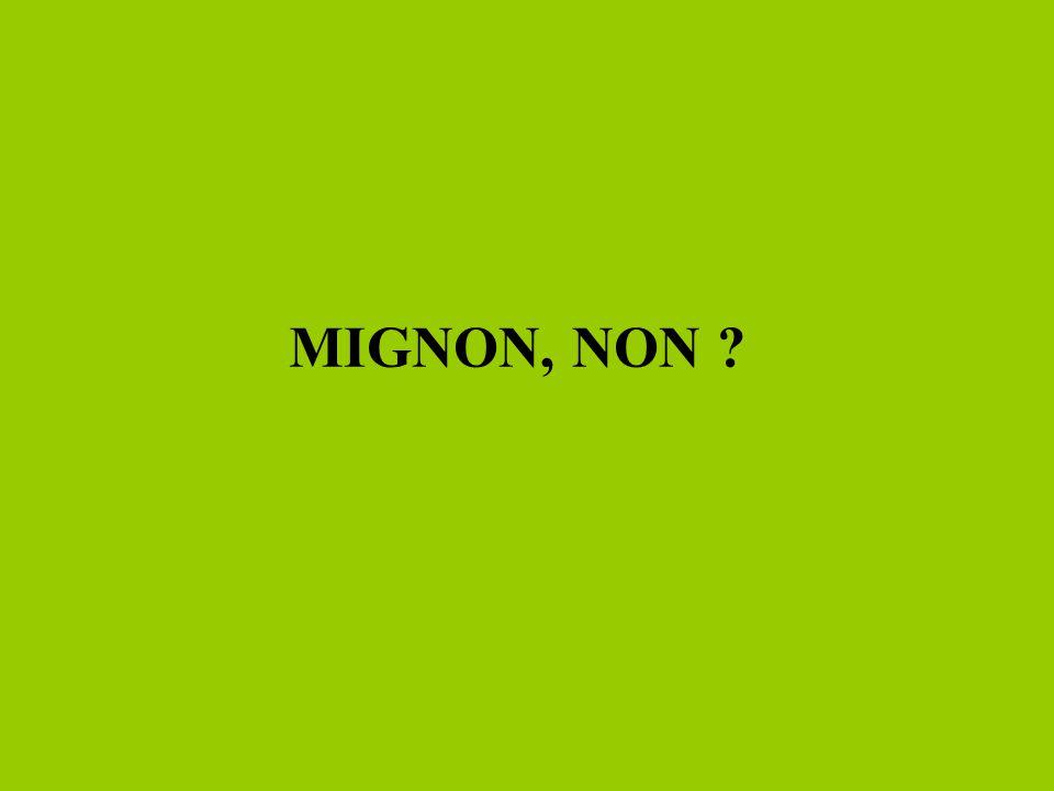 MIGNON, NON