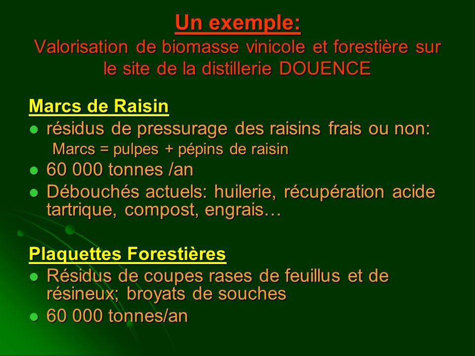 Un exemple: Valorisation de biomasse vinicole et forestière sur le site de la distillerie DOUENCE