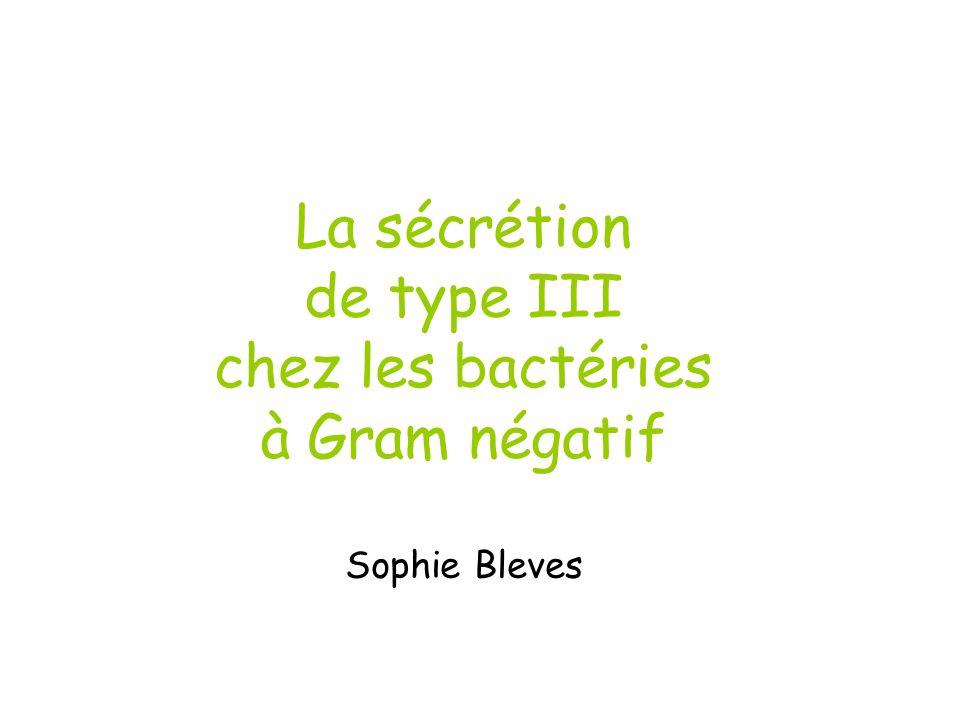 La sécrétion de type III chez les bactéries à Gram négatif