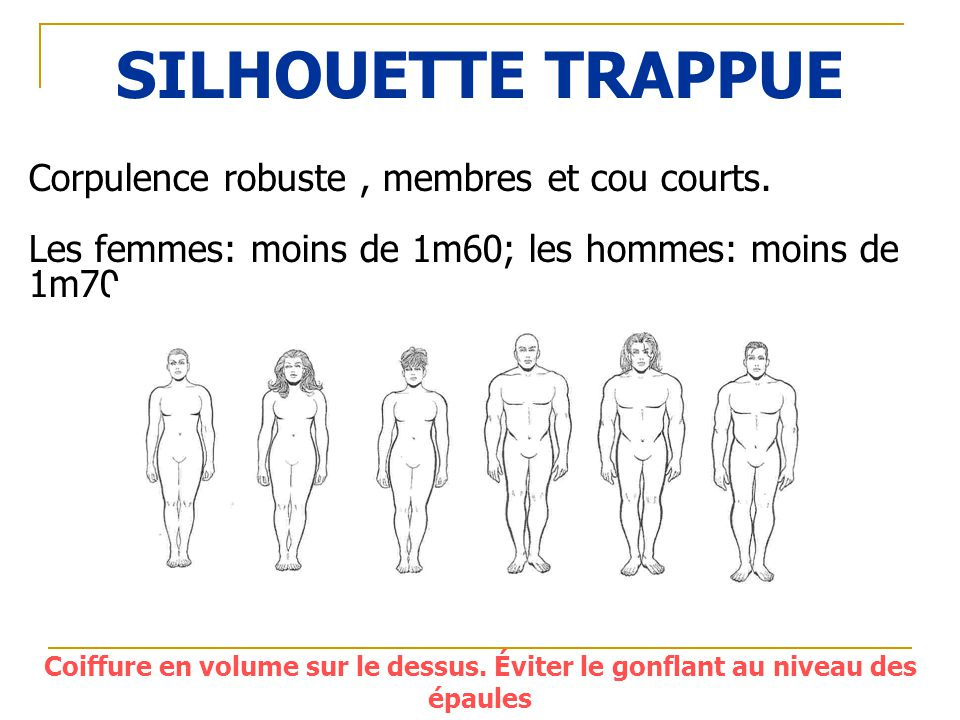 SILHOUETTE TRAPPUE Corpulence robuste , membres et cou courts.