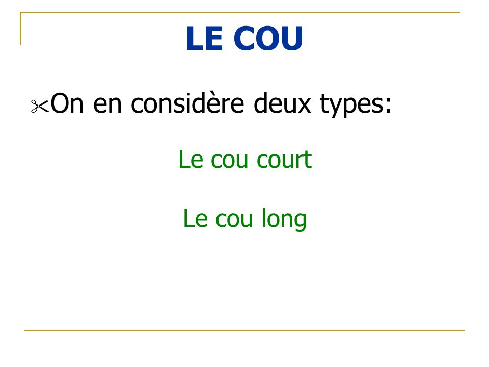 LE COU On en considère deux types: Le cou court Le cou long