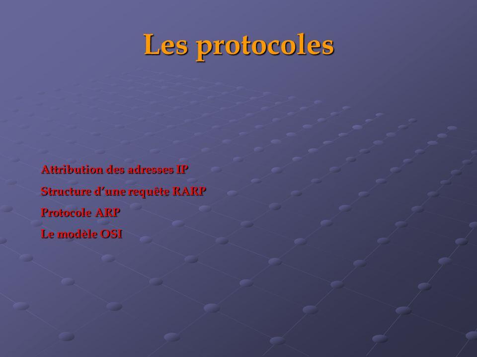 Les protocoles Attribution des adresses IP