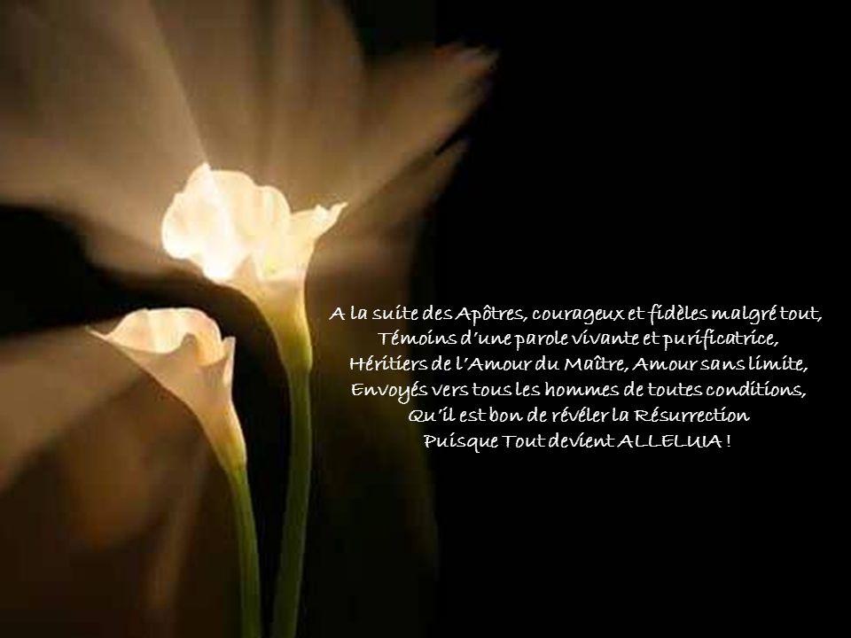 A la suite des Apôtres, courageux et fidèles malgré tout,