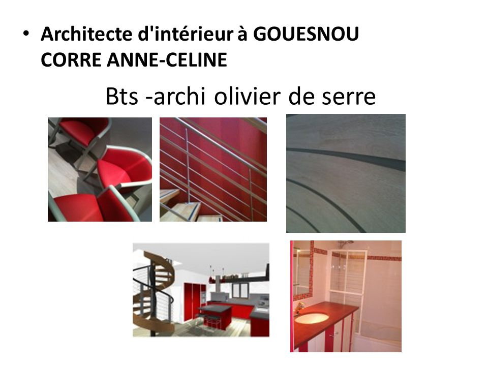 Architectes d int rieure ppt video online t l charger for Bts decorateur interieur