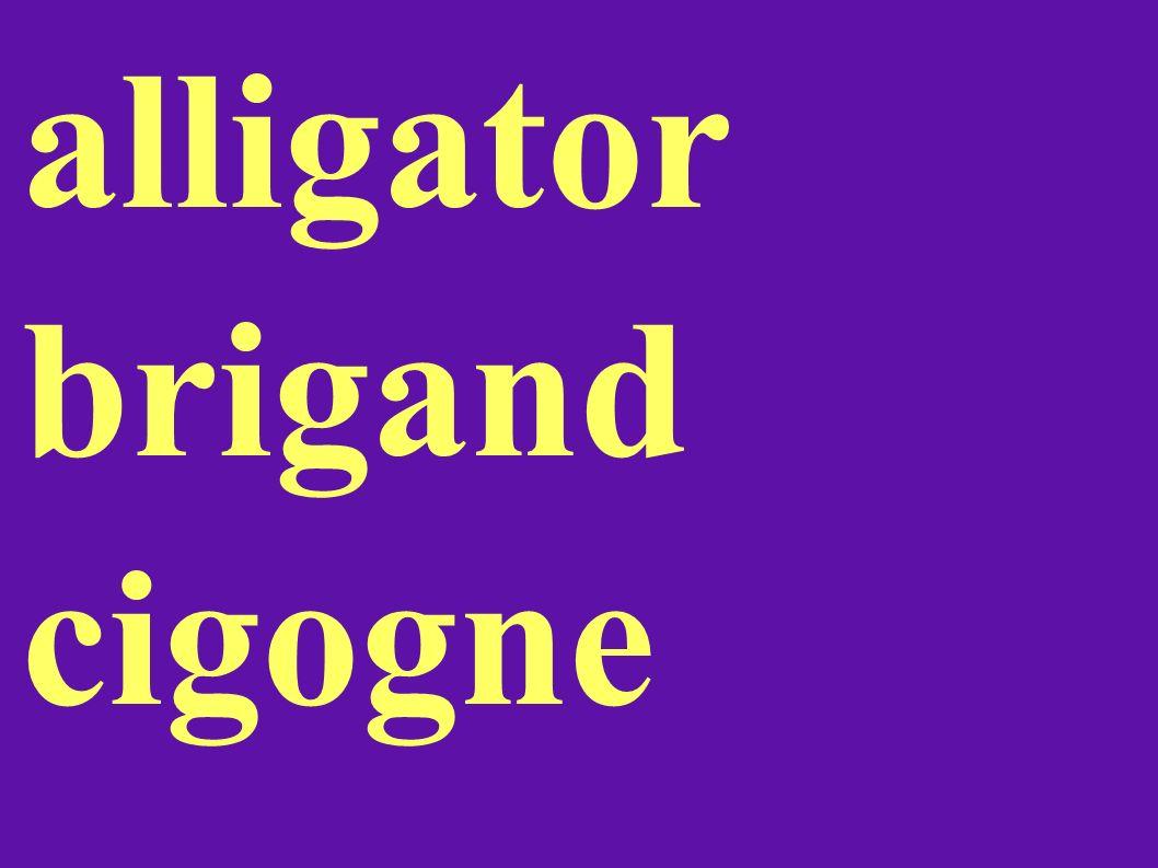 alligator brigand cigogne