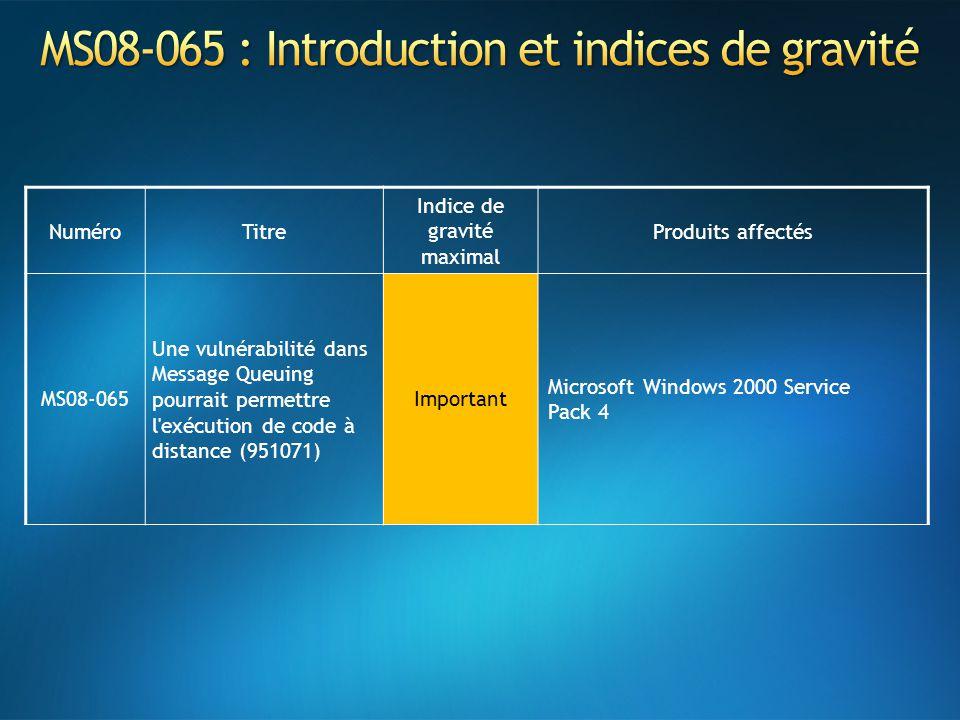 MS08-065 : Introduction et indices de gravité