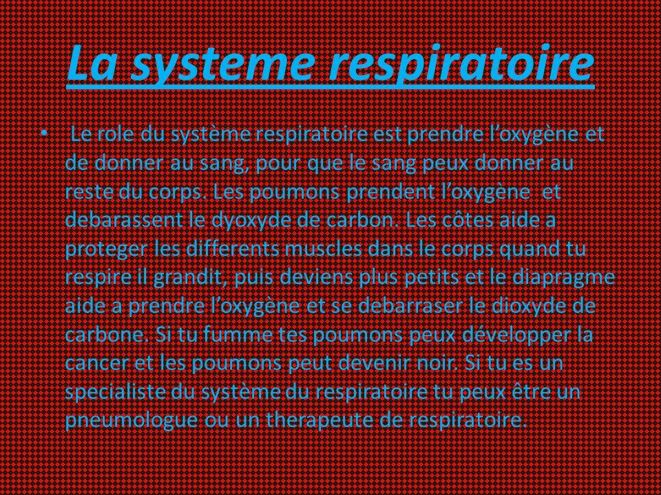 La systeme respiratoire