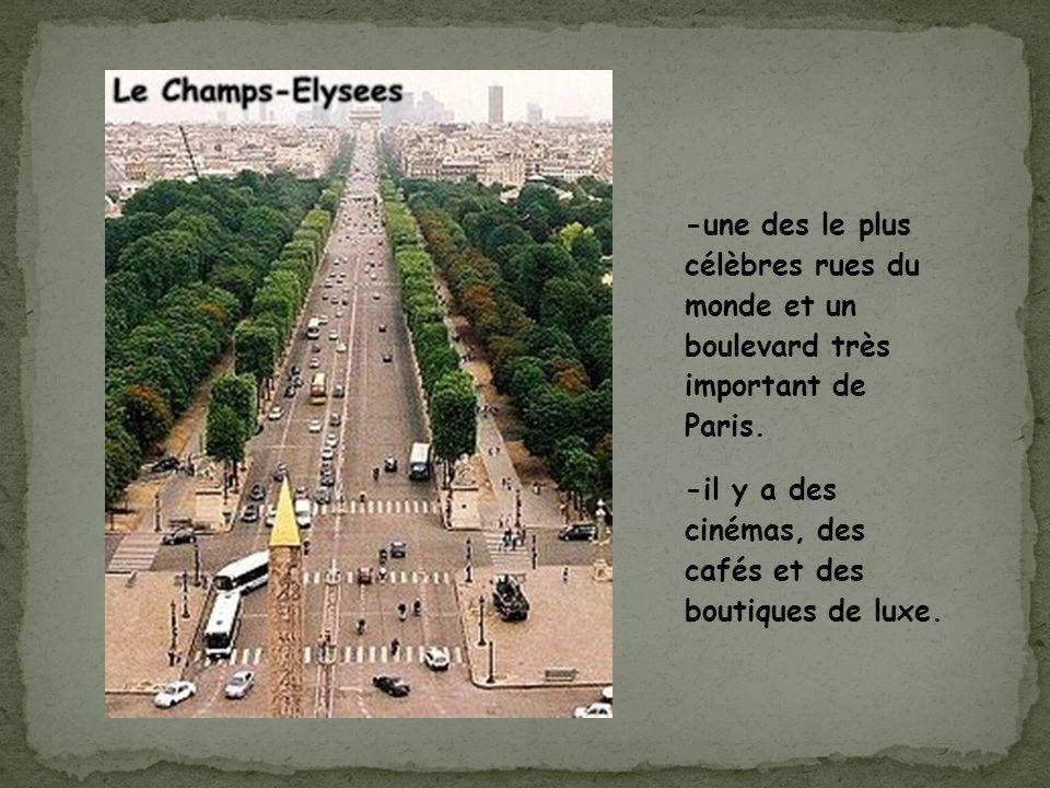 -une des le plus célèbres rues du monde et un boulevard très important de Paris.
