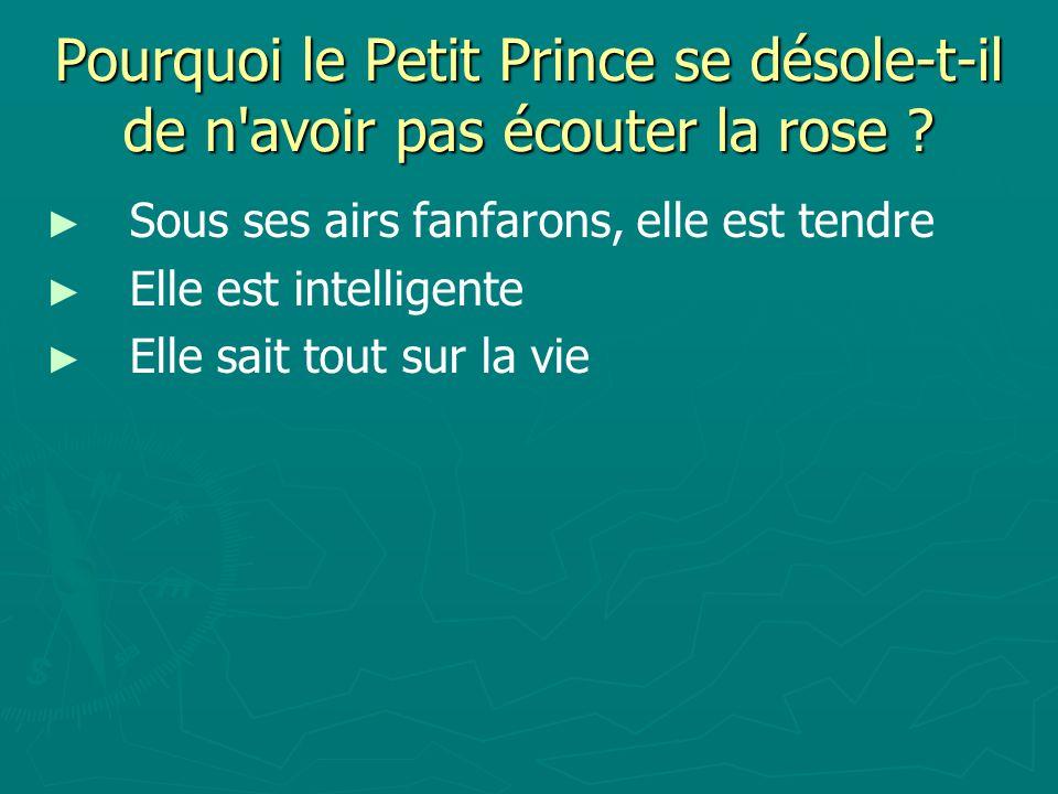 Pourquoi le Petit Prince se désole-t-il de n avoir pas écouter la rose