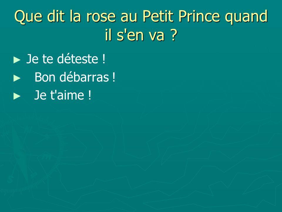 Que dit la rose au Petit Prince quand il s en va