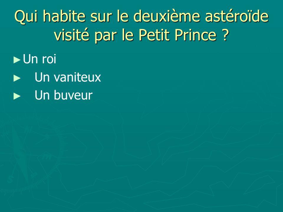Qui habite sur le deuxième astéroïde visité par le Petit Prince