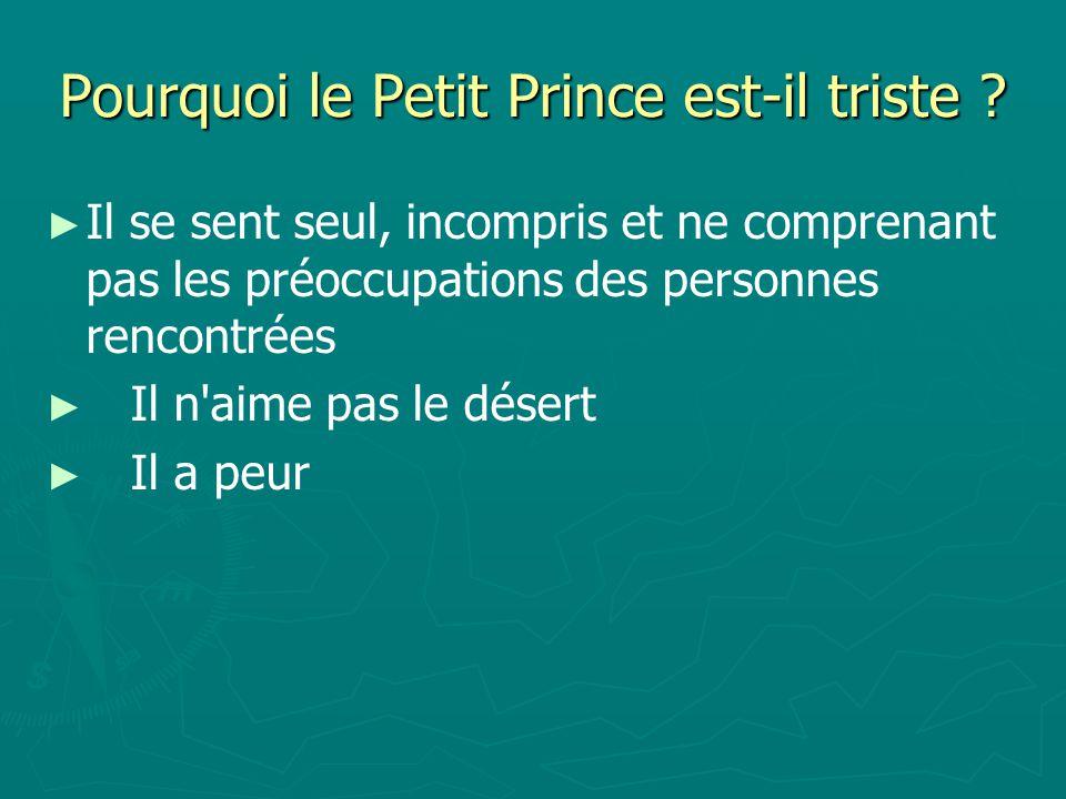 Pourquoi le Petit Prince est-il triste