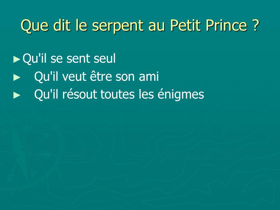 Que dit le serpent au Petit Prince