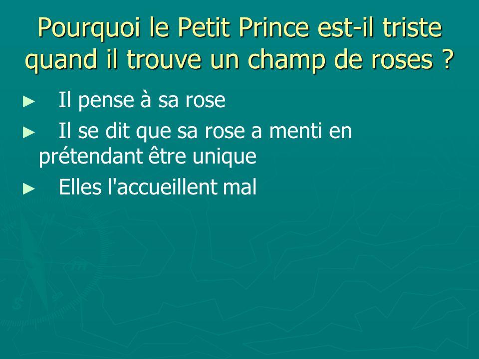 Pourquoi le Petit Prince est-il triste quand il trouve un champ de roses