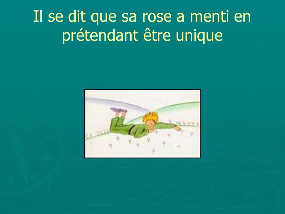 Il se dit que sa rose a menti en prétendant être unique