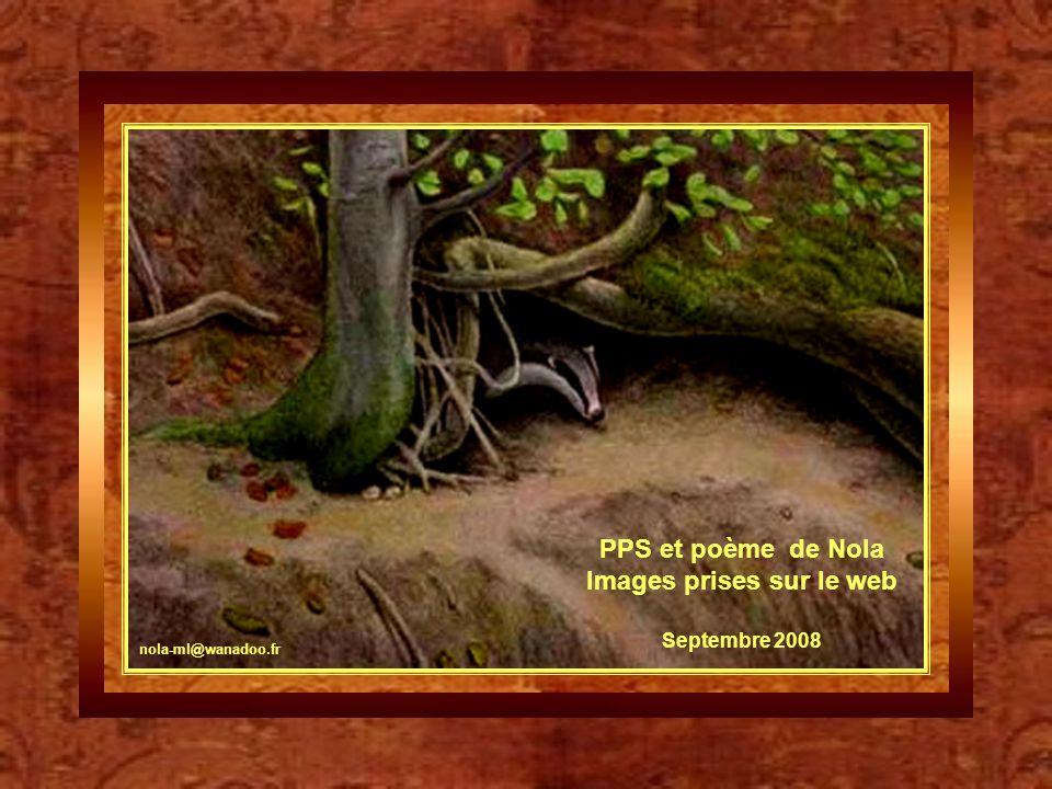 Images prises sur le web