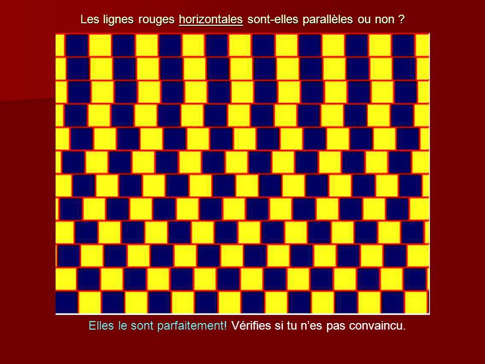 Les lignes rouges horizontales sont-elles parallèles ou non