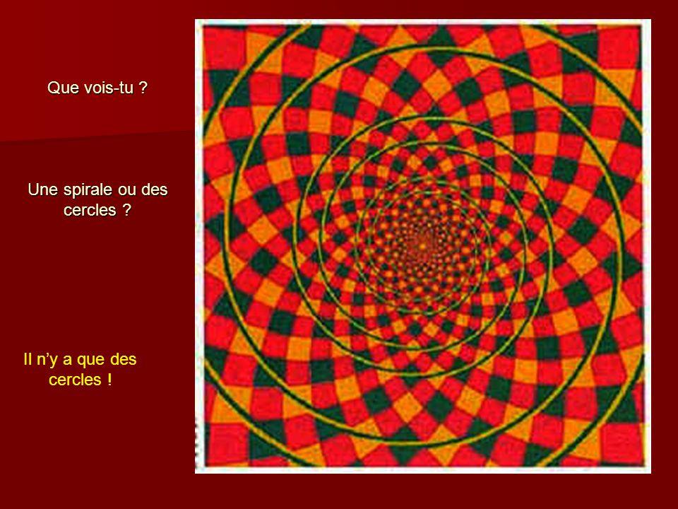 Que vois-tu Une spirale ou des cercles