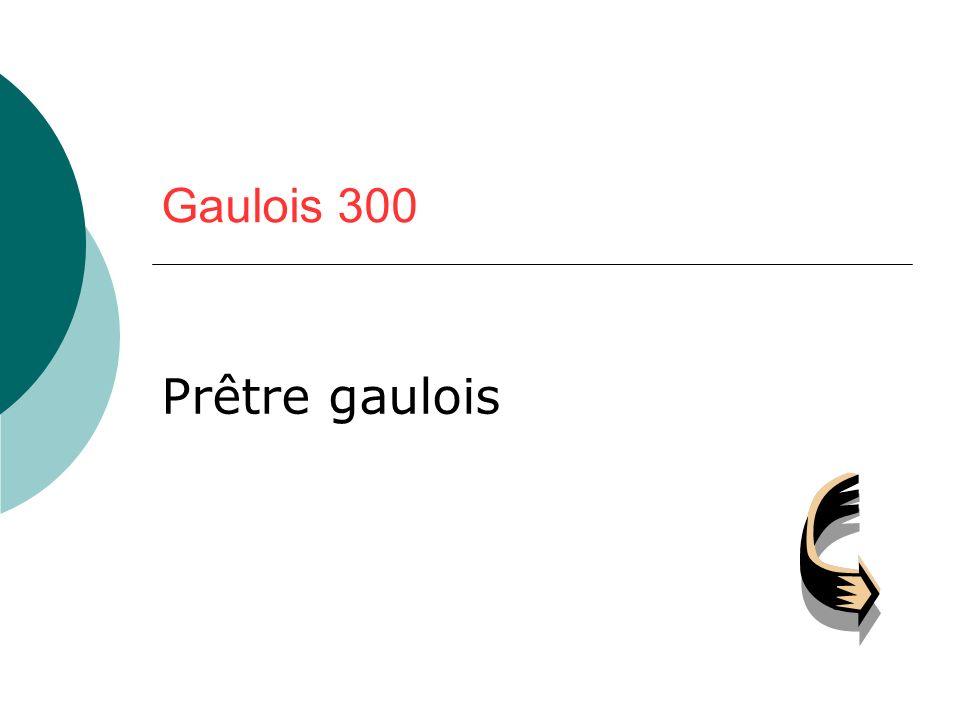 Gaulois 300 Prêtre gaulois