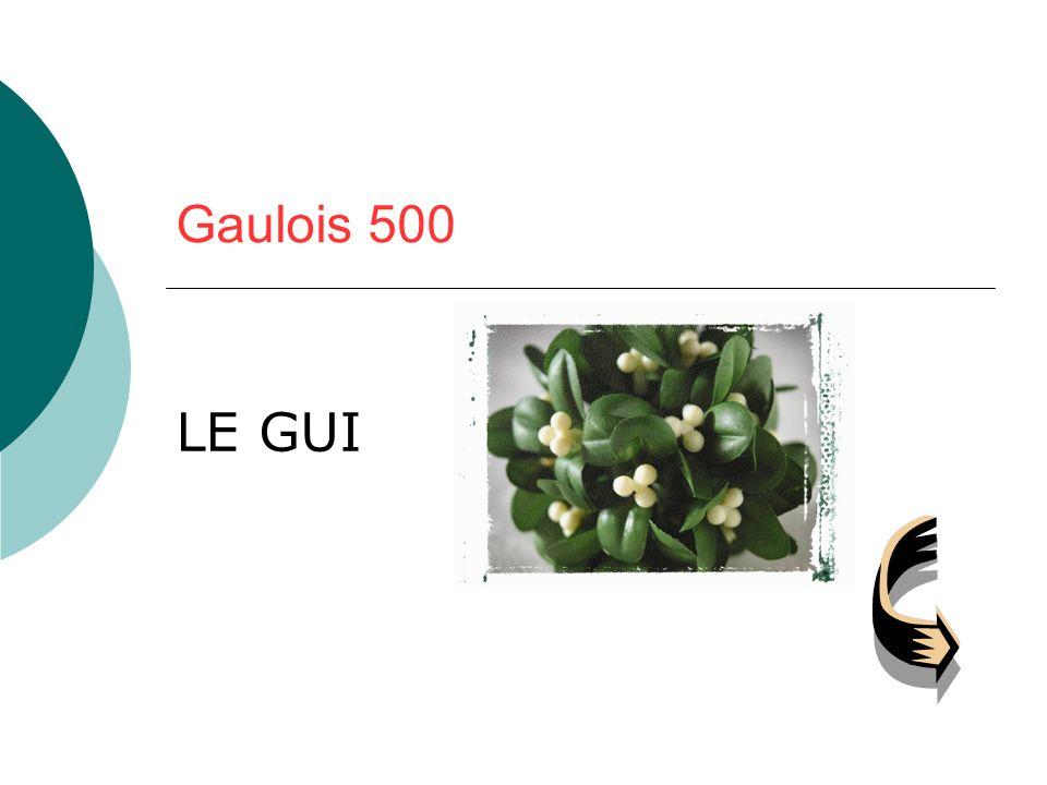Gaulois 500 LE GUI
