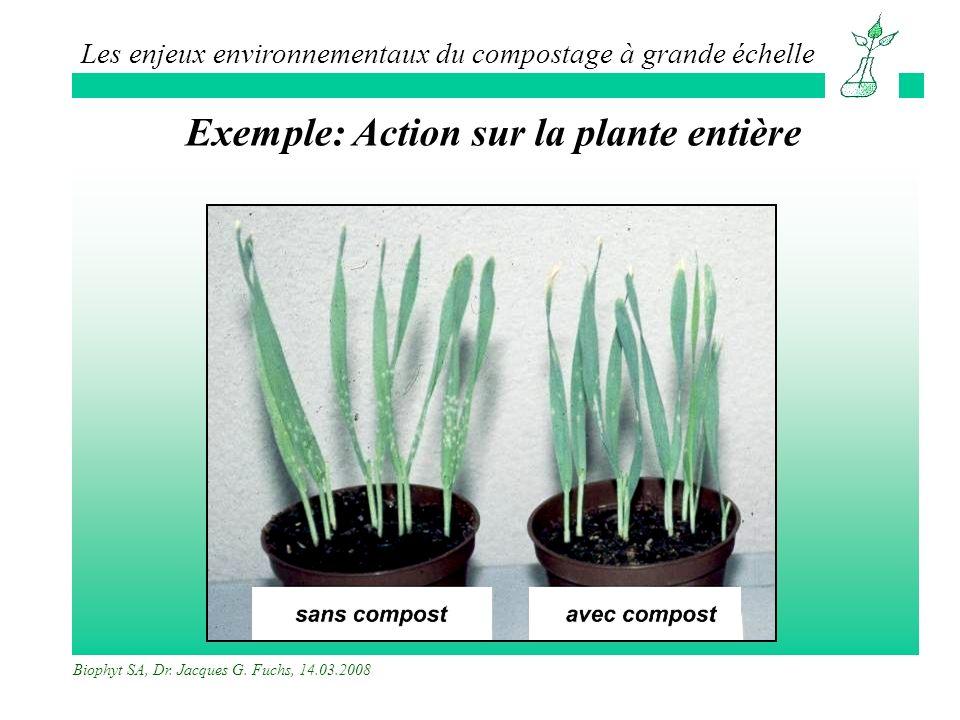 Exemple: Action sur la plante entière