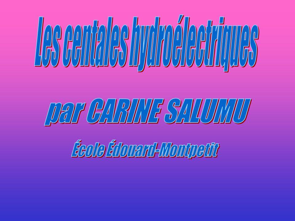 par CARINE SALUMU Les centales hydroélectriques
