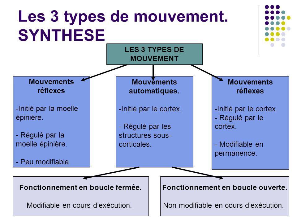 Les 3 types de mouvement. SYNTHESE