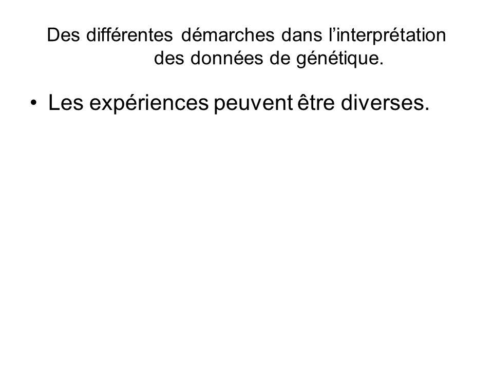 Les expériences peuvent être diverses.