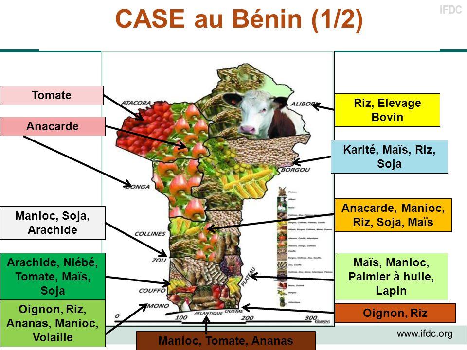 CASE au Bénin (1/2) Tomate Riz, Elevage Bovin Anacarde