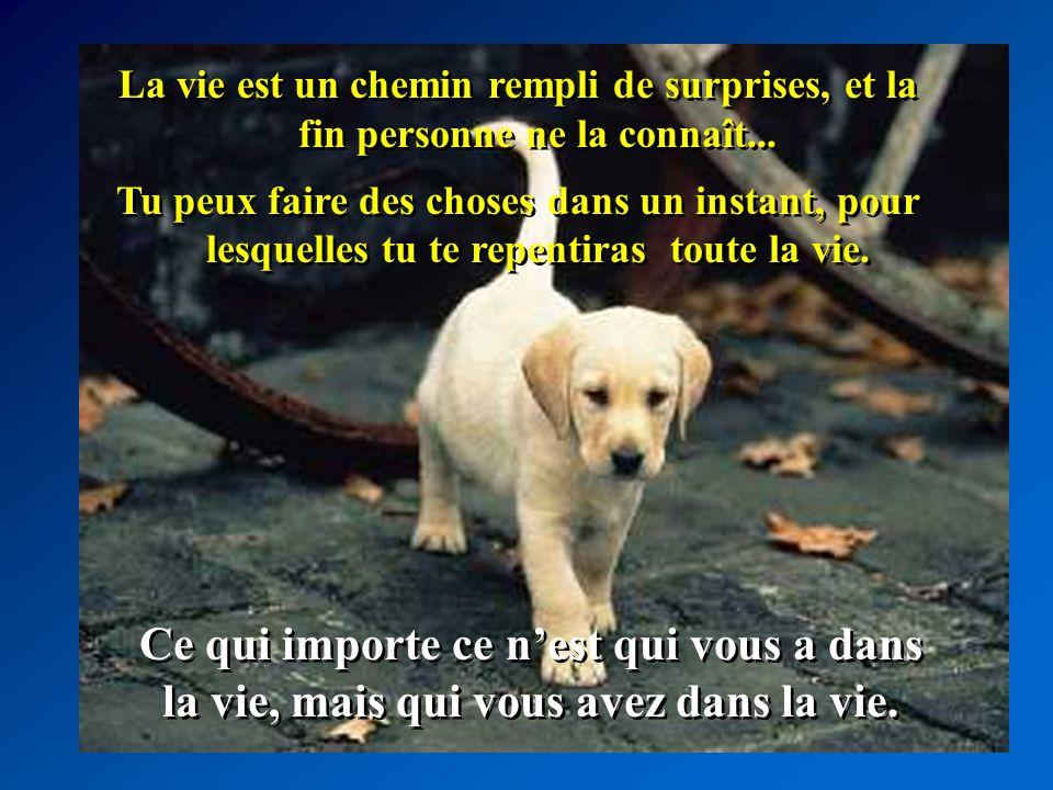 La vie est un chemin rempli de surprises, et la fin personne ne la connaît...