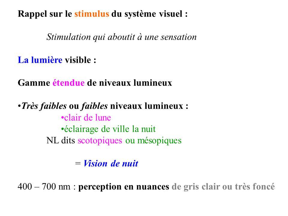 Rappel sur le stimulus du système visuel :