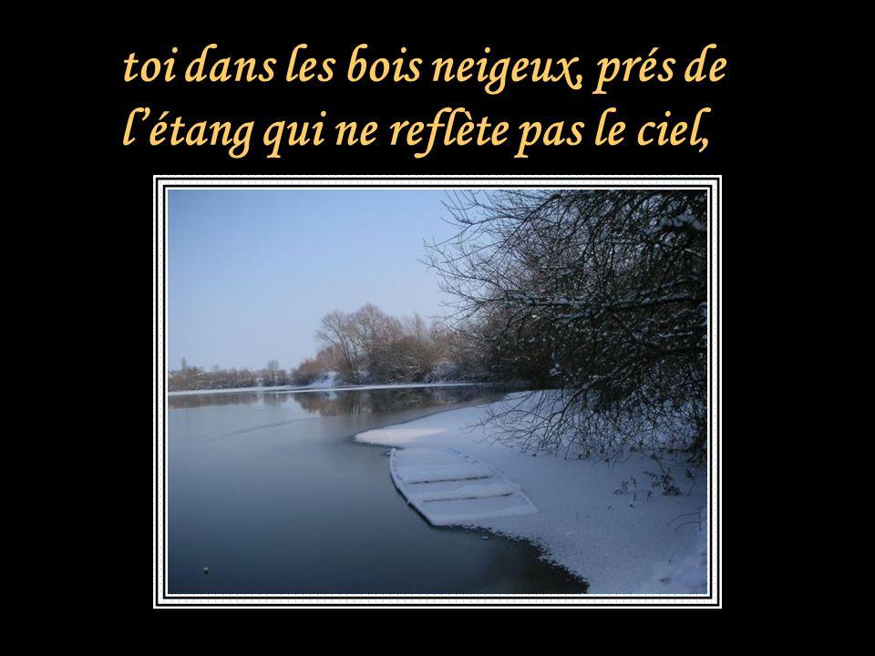 toi dans les bois neigeux, prés de l'étang qui ne reflète pas le ciel,