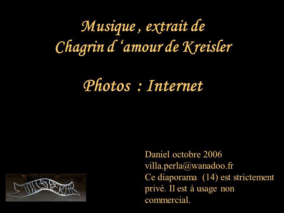 Musique , extrait de Chagrin d 'amour de Kreisler