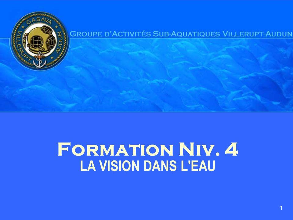 Formation Niv. 4 LA VISION DANS L EAU