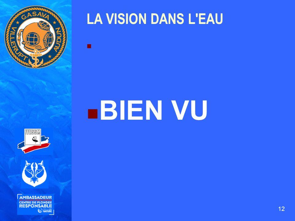 LA VISION DANS L EAU BIEN VU 12 12