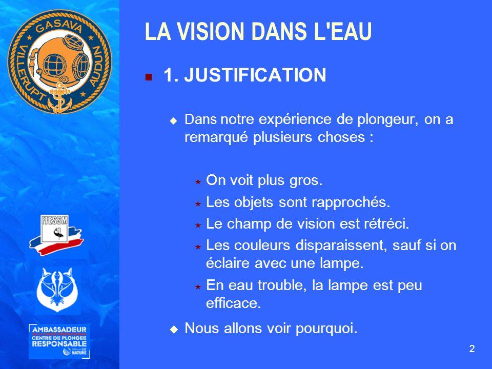 LA VISION DANS L EAU 1. JUSTIFICATION On voit plus gros.