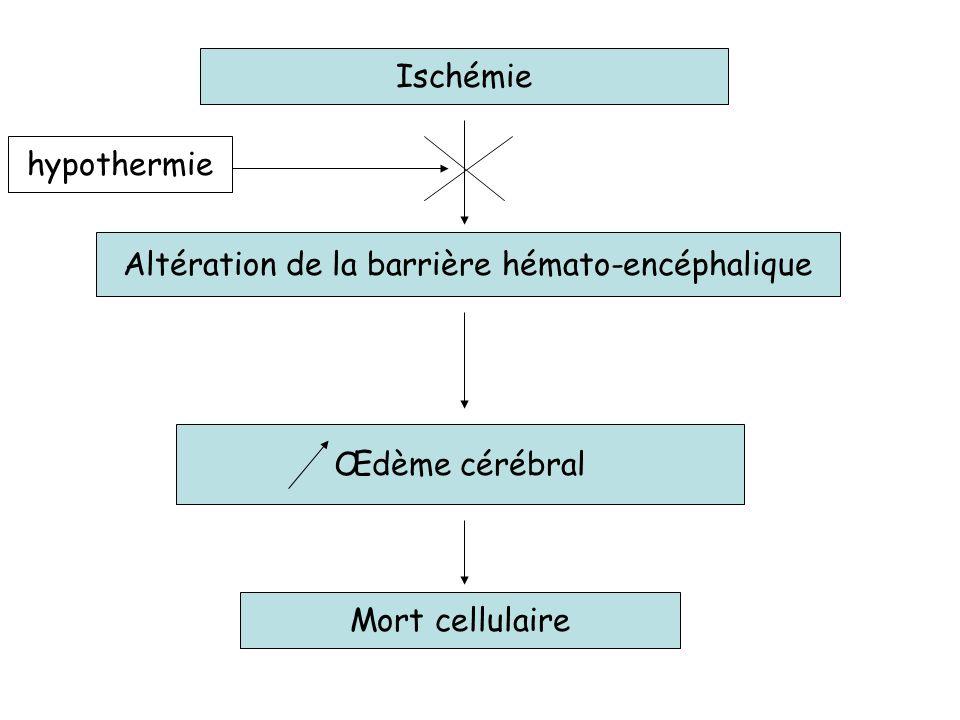 Altération de la barrière hémato-encéphalique