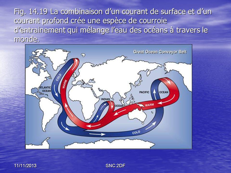 Fig. 14.19 La combinaison d'un courant de surface et d'un courant profond crée une espèce de courroie d'entrainement qui mélange l'eau des océans à travers le monde.