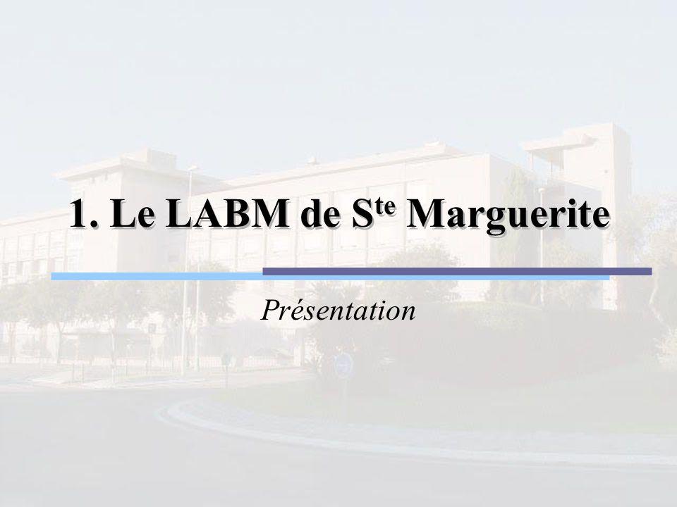 1. Le LABM de Ste Marguerite
