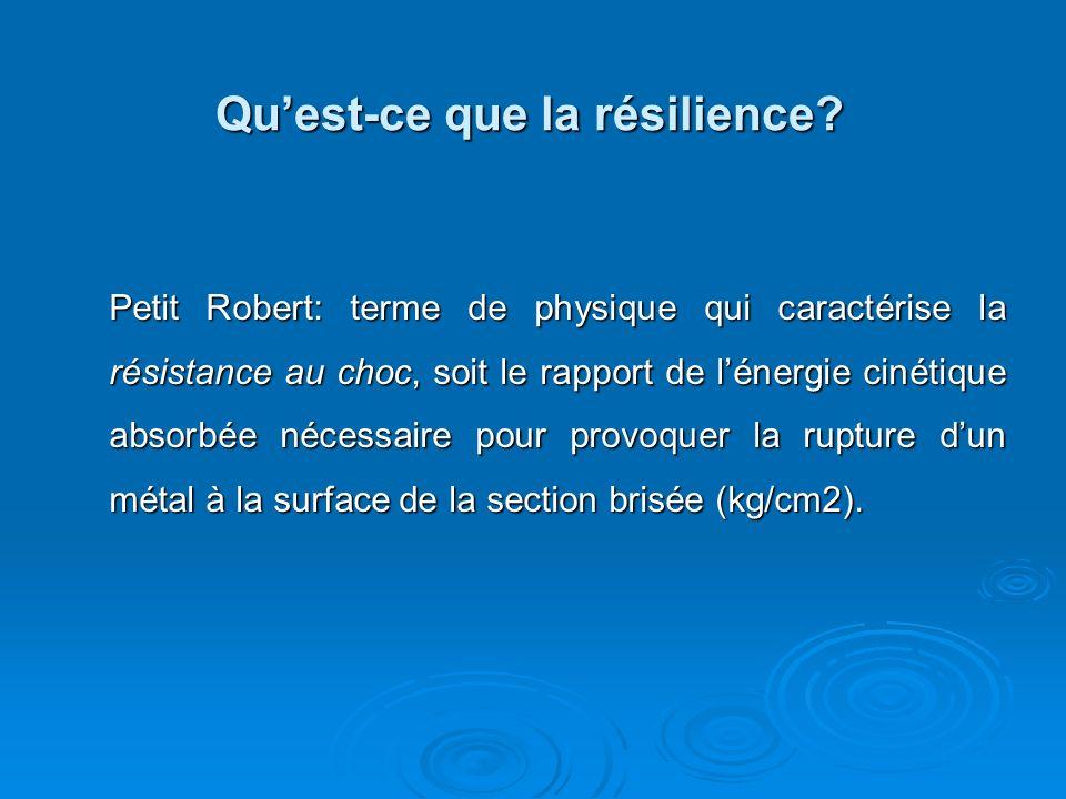 Qu'est-ce que la résilience