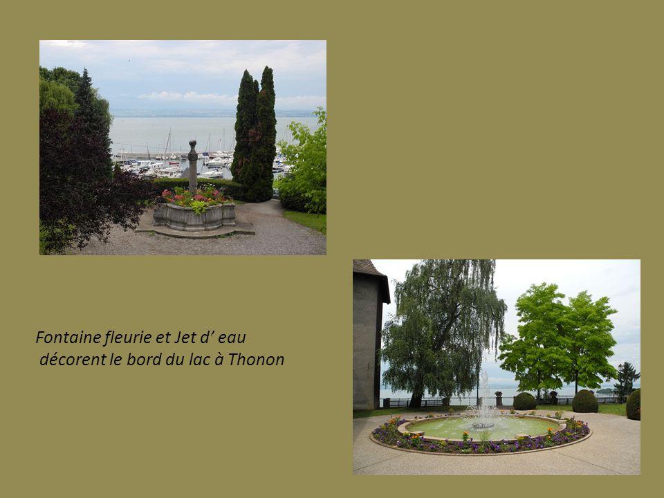 Fontaine fleurie et Jet d' eau