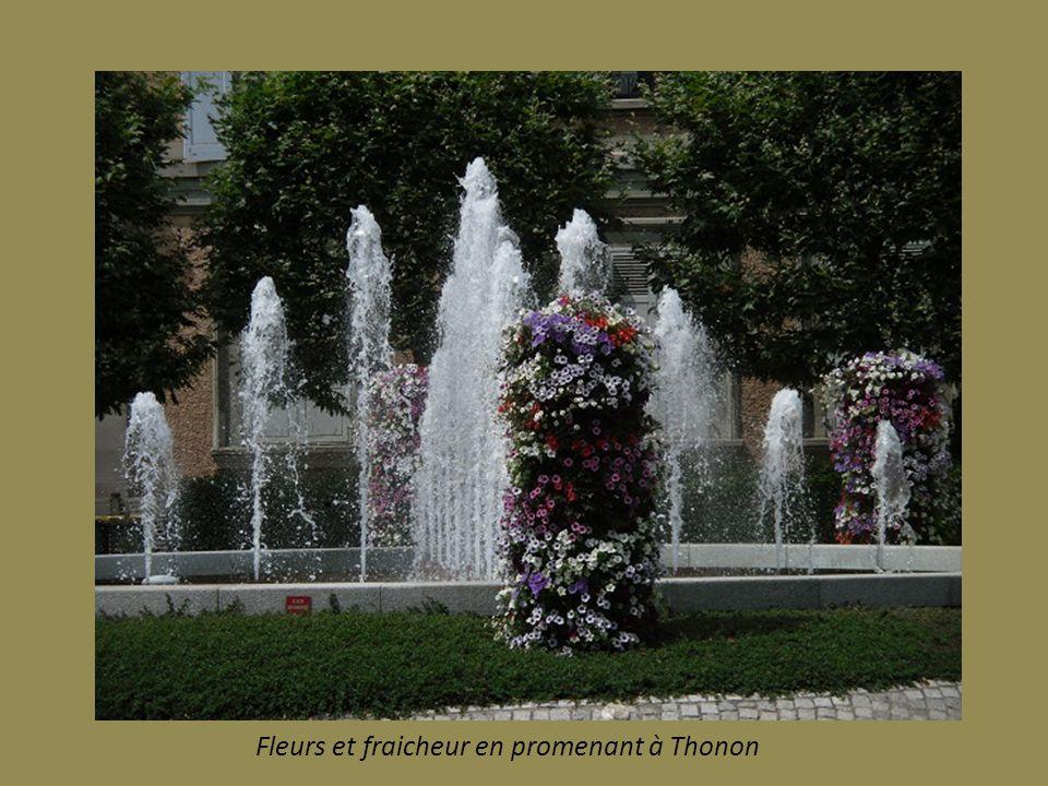 Fleurs et fraicheur en promenant à Thonon