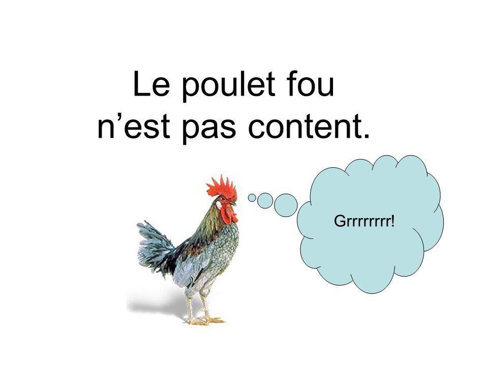 Le poulet fou n'est pas content.