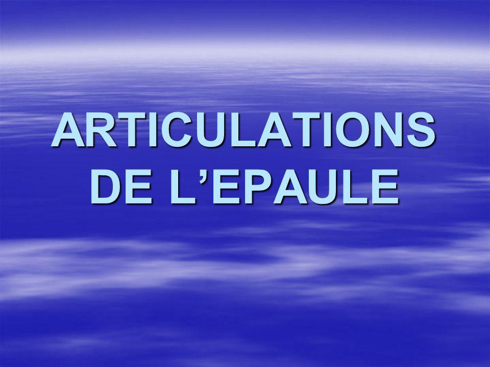 ARTICULATIONS DE L'EPAULE