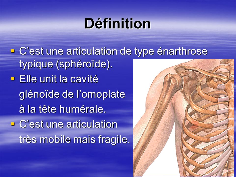 DéfinitionC'est une articulation de type énarthrose typique (sphéroïde). Elle unit la cavité. glénoïde de l'omoplate.