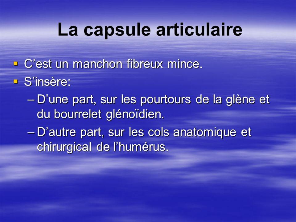 La capsule articulaire